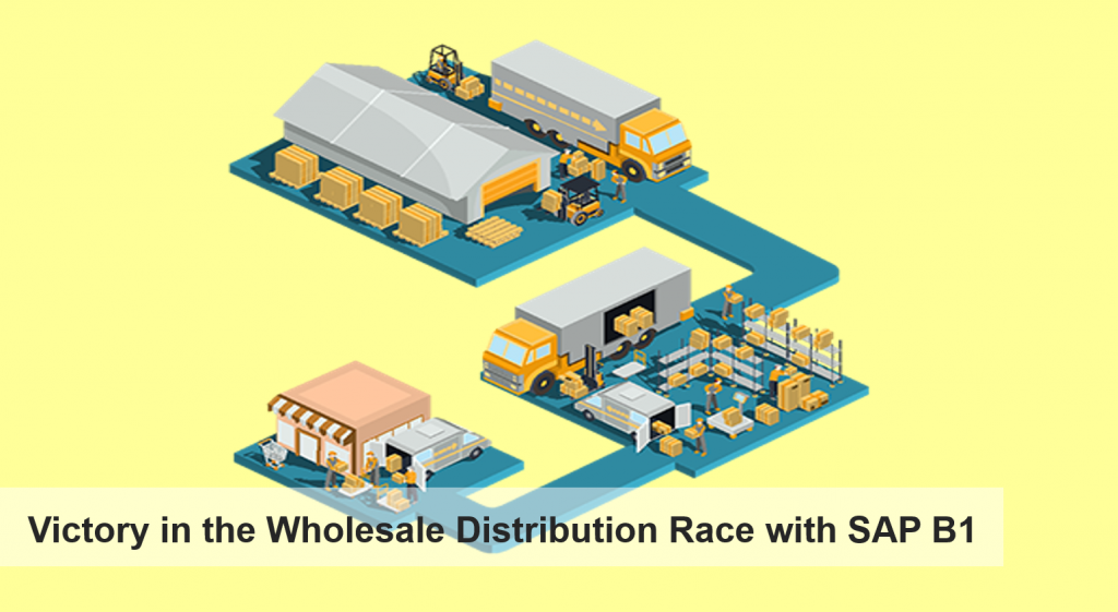 victory in the wholesale dist race with sap b1
